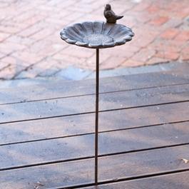 Abreuvoir Finch