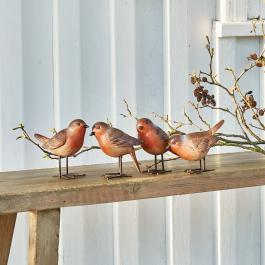 Lot de 4 oiseaux Siblings