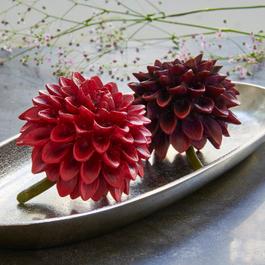 Lot de 2 décorations fleurs Dahlien