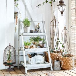 Escalier pour plantes Étape