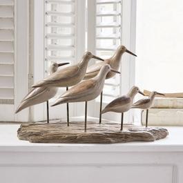 Oiseaux Kontreo