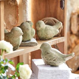 Lot de 4 oiseaux Bonna